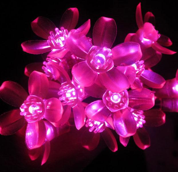 Dây Đèn Led Hoa Mai Hoa Đào 8M-60 Bóng Trang Trí Lễ, Tết ,Party
