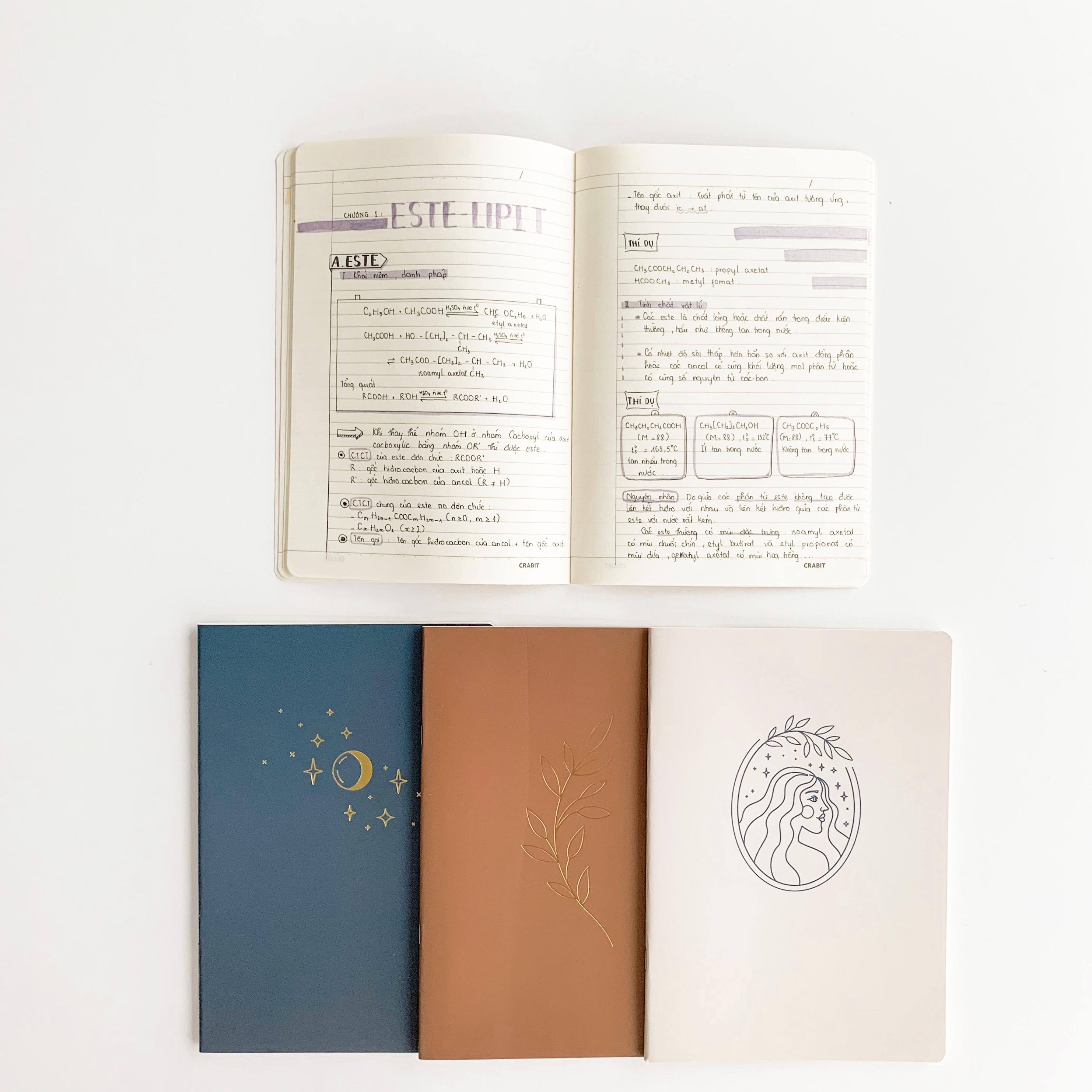 Combo 6 vở kẻ ngang Crabit Nhũ 80 trang (Lốc cố định 3 mẫu)