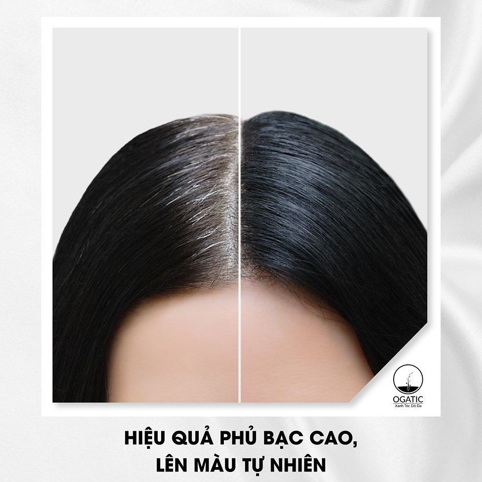 Thuốc nhuộm tóc bạc bột lá móng thiên nhiên OGATIC màu Nâu