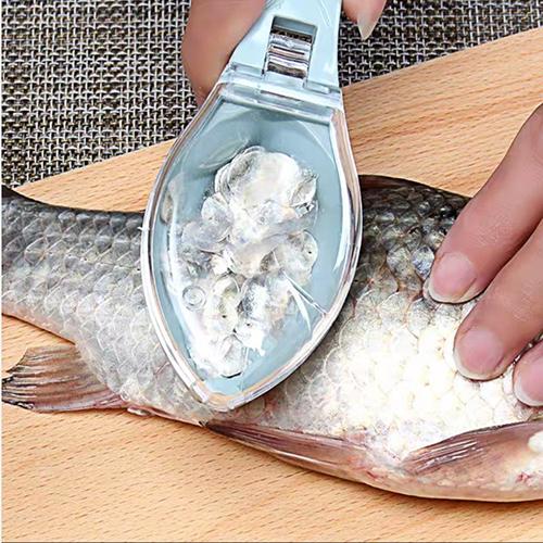Dụng cụ cạo vẩy đánh cá