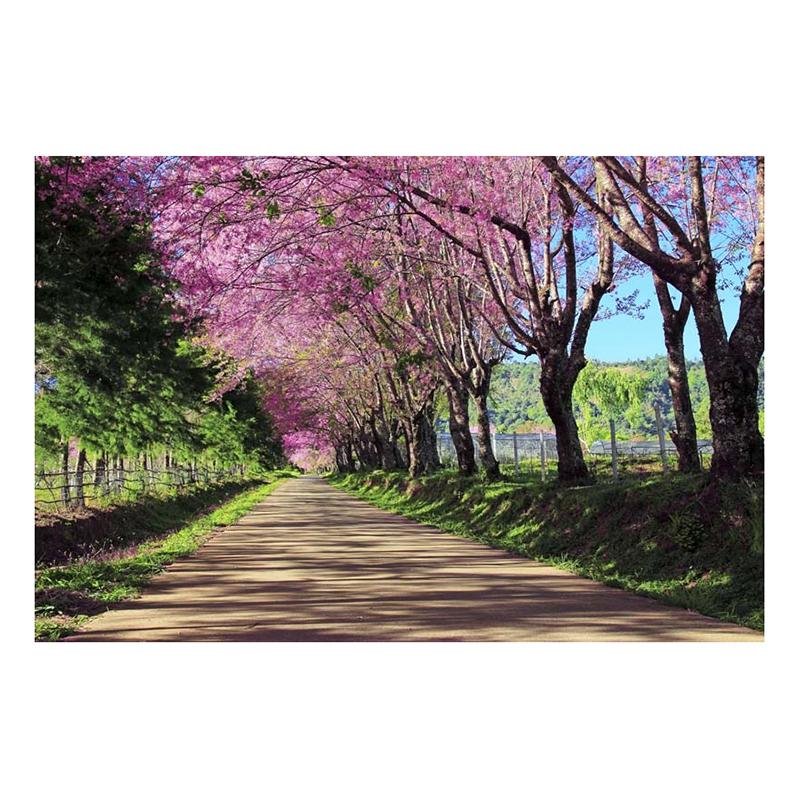 Tranh Dán Tường Phong Cảnh 3D LN0127 - 200 x 150 cm