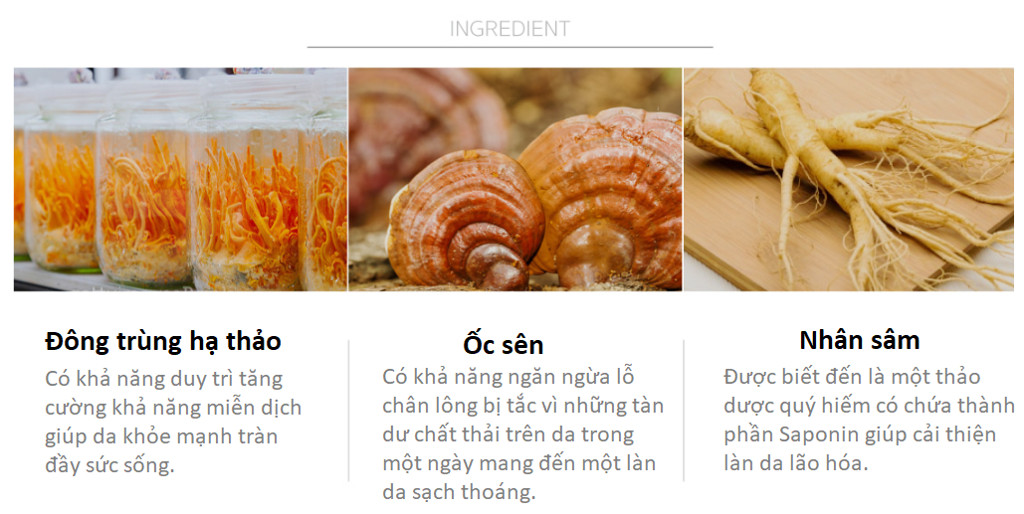 Combo 10 tặng 5 Mặt Nạ Dưỡng Chất Thảo Mộc Useemi Natural Healing Oriental Herb Mask