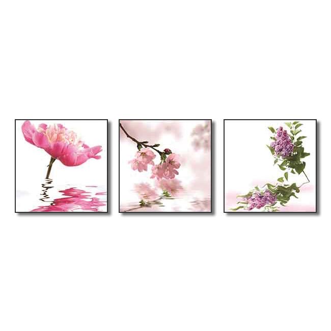 Tranh Hoa Treo Phòng Khách Q6D12-HH00215 Size 50 x 50 cm
