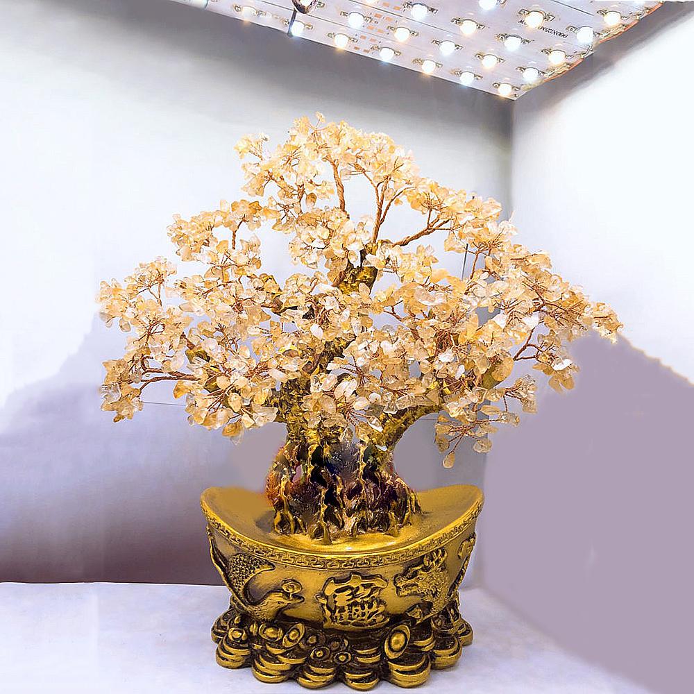 Cây Tài Lộc Thạch Anh Vàng (Long Phụng)