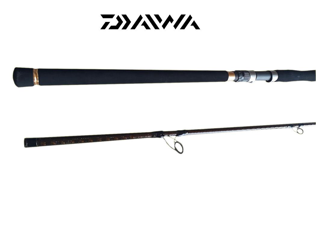 Cần Câu Cá Daiwa Catfish 1002H