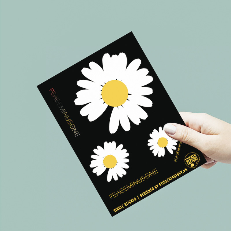 Hoa cúc Daisy - Single Sticker hình dán lẻ