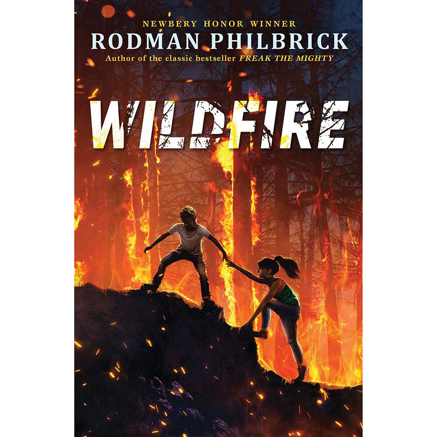 Wildfire: A Novel (Hardcover)