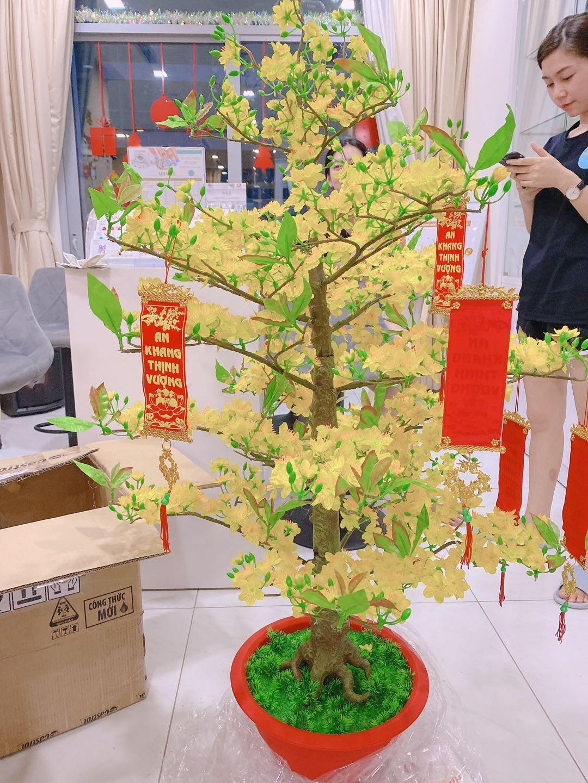 Cây Hoa Mai Nhựa Cao 1m45 Hoa Mai Giả Trang Trí Tết
