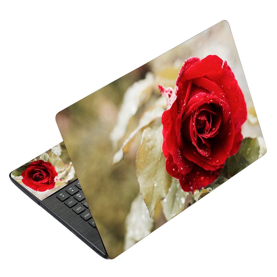 Miếng Dán Decal Dành Cho Laptop Mẫu Nghệ Thuật LTNT-451