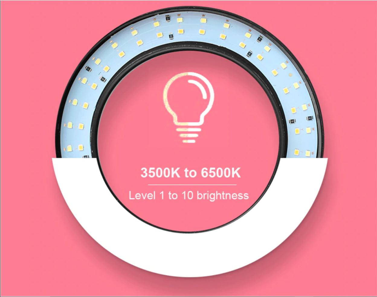 Combo Vòng Đèn Led 3 Chế Độ Sáng Ring Fill Lighting Live Streaming 26cm + Chân Tripod 2m + Đầu kẹp điện thoại