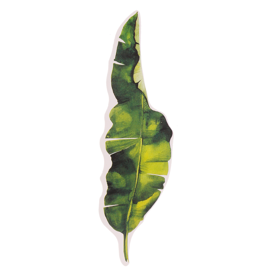 Bộ 30 Bookmark Hình Hoa (4.2 x 15 cm)