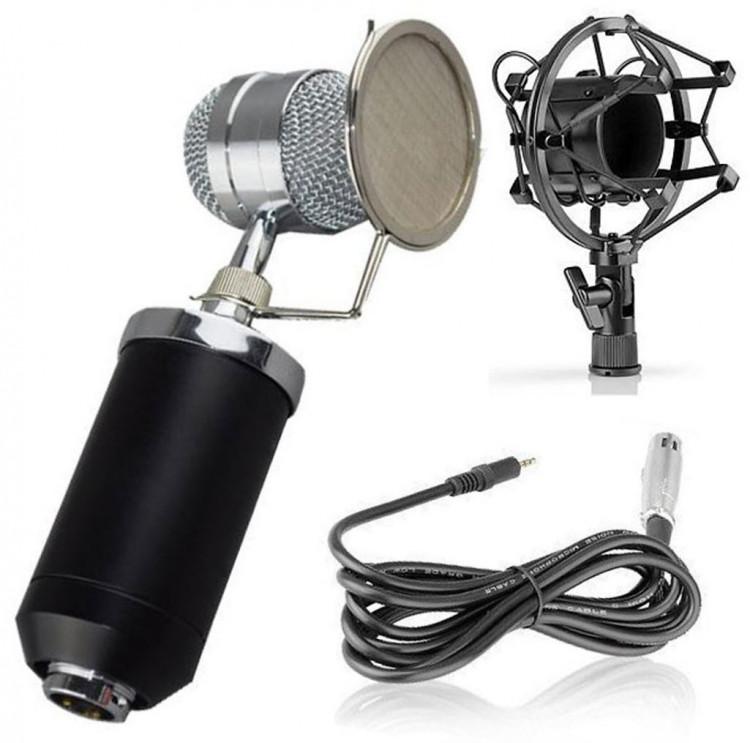 Micro hát Karaoke chuyên nghiệp BM-8000