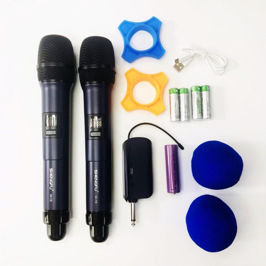 Micro không dây chống hú cao cấp W15