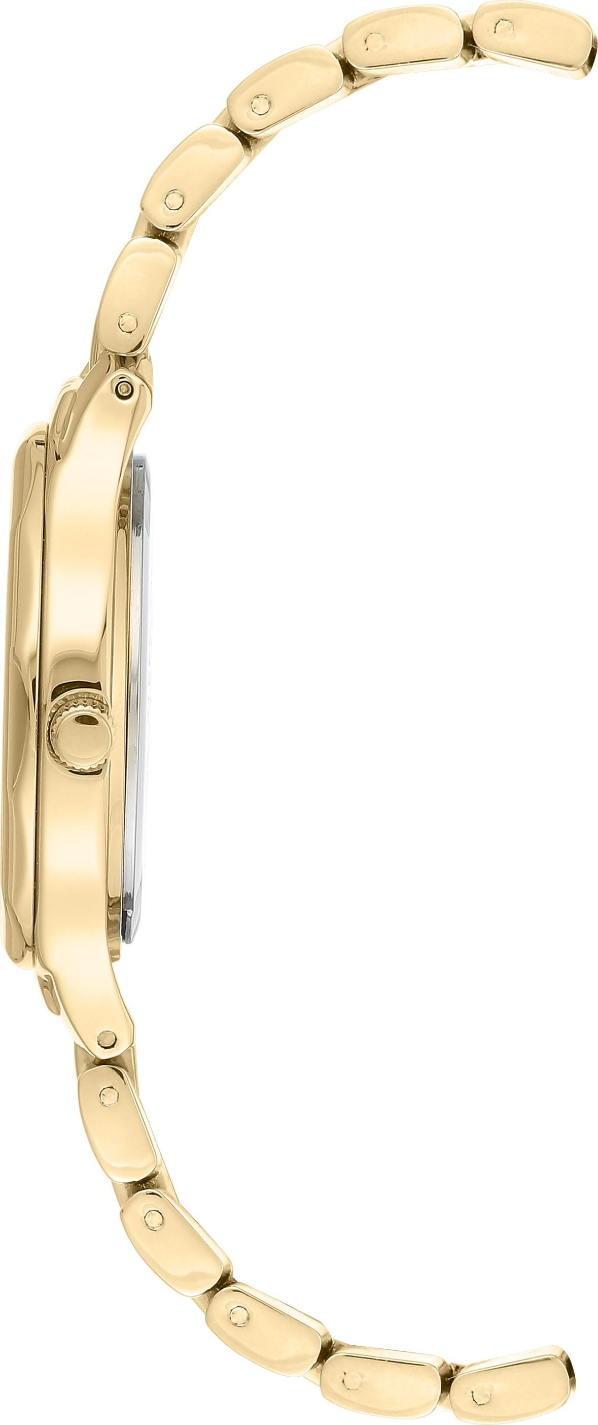 Đồng hồ thời trang nữ ANNE KLEIN 3490CHGB