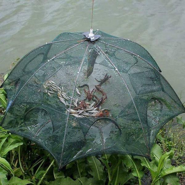 Lưới bát quái bắt cá loại 8 lỗ tiện dụng