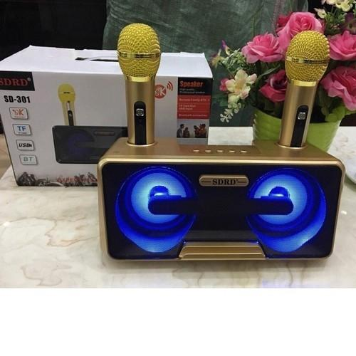 Loa karaoke SD-302