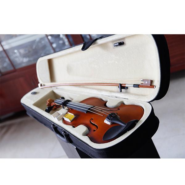 Đàn violon
