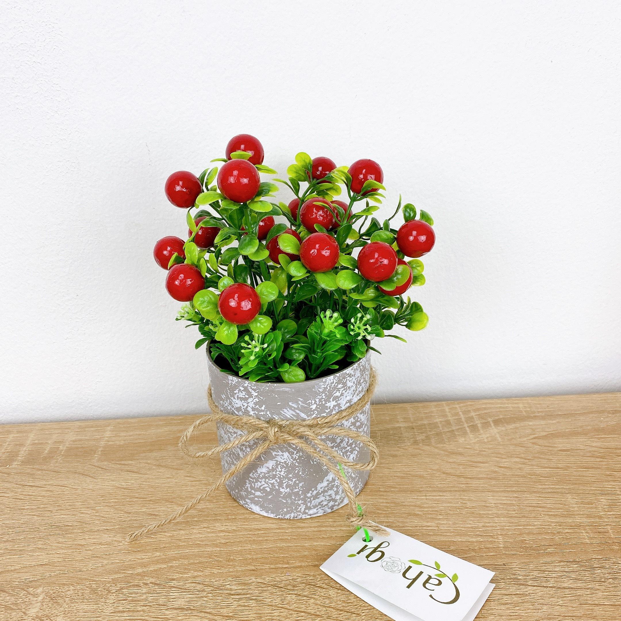 Hoa Giả Chậu chery Cắm Sẵn