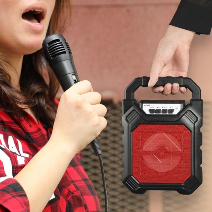 Loa di động kèm Micro, hát Karaoke, trợ giảng - Màu Đen