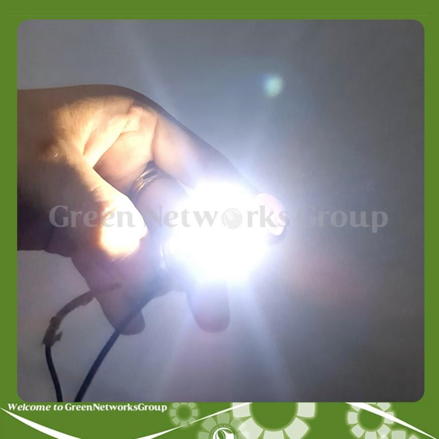 Đèn pha led 2 tim chân H4 chân M5 có bi cầu trên đầu Green Networks Group ( 1 cái )