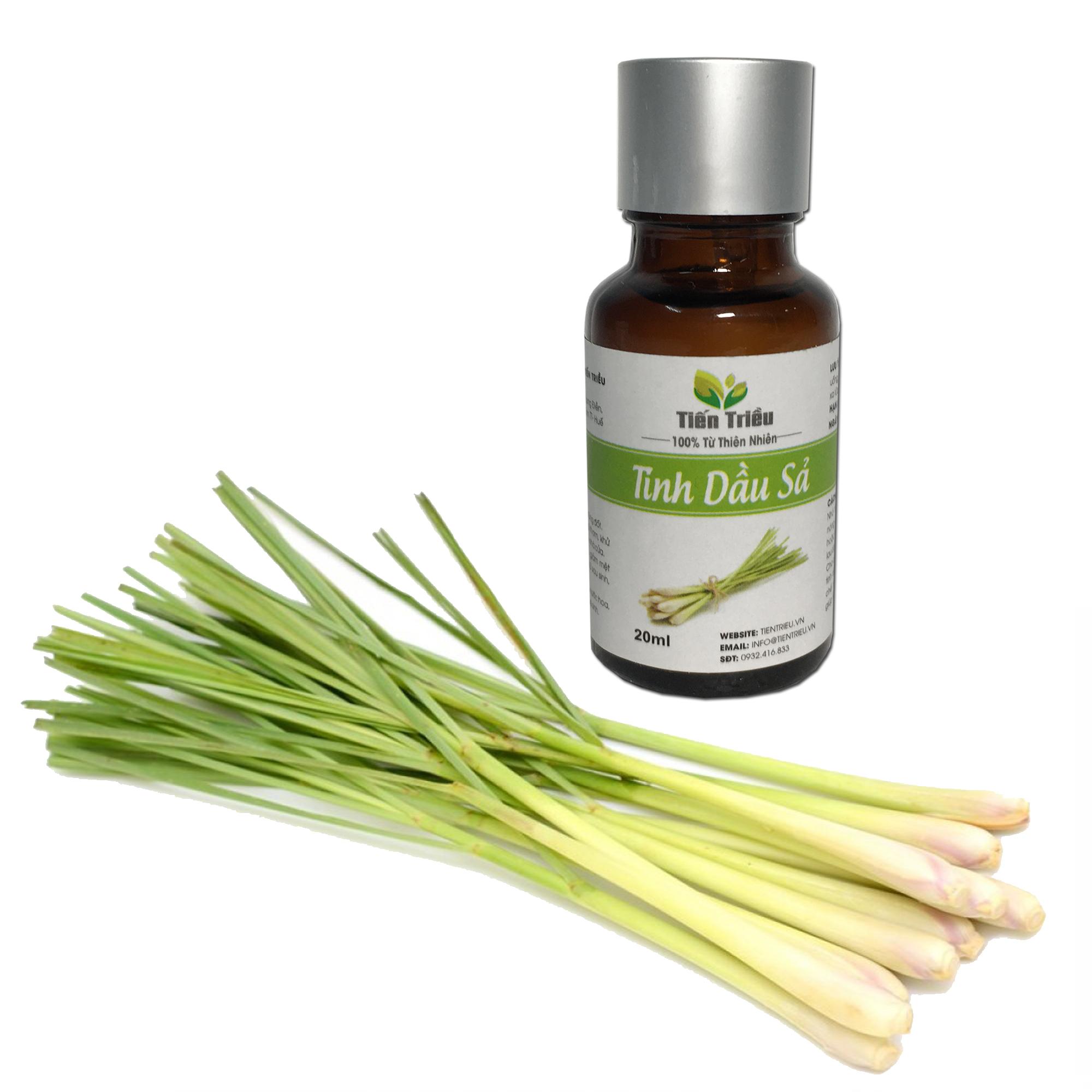 Tinh dầu sả nguyên chất Tiến Triều 20ml - Giúp xông phòng, khửi mùi, kháng khuẩn, đuổi muỗi...
