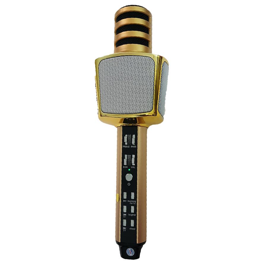 Micro Karaoke Tích Hợp Loa Bluetooth SD-17