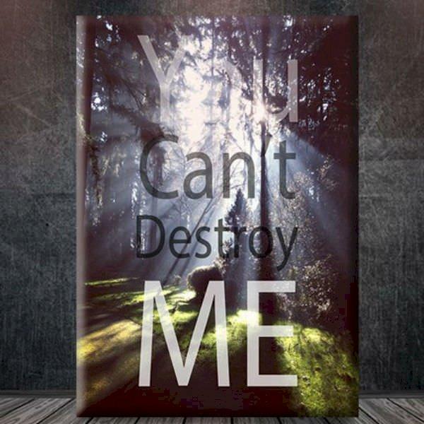 Tranh Tạo Động Lực You Cant Destroy Me W225  60 x 90 cm - 24056711 , 9377665777624 , 62_4711219 , 494000 , Tranh-Tao-Dong-Luc-You-Cant-Destroy-Me-W225-60-x-90-cm-62_4711219 , tiki.vn , Tranh Tạo Động Lực You Cant Destroy Me W225  60 x 90 cm