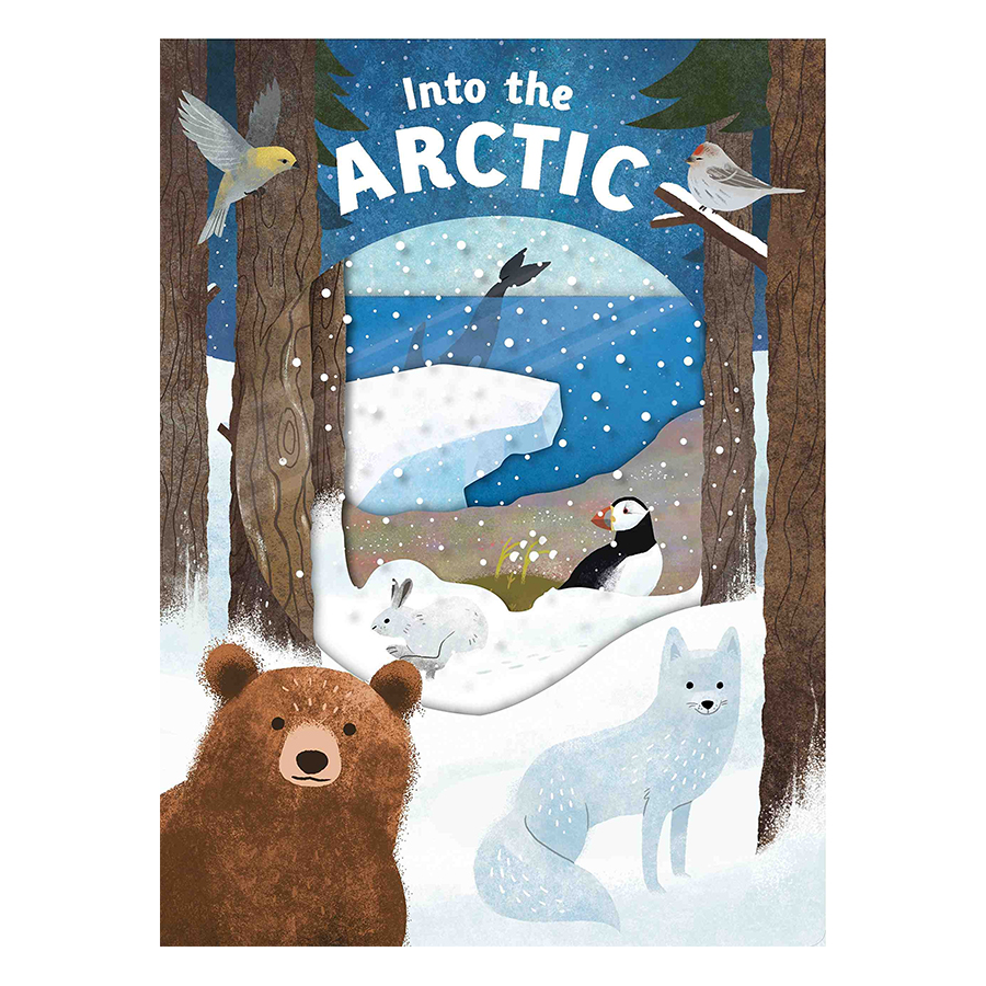 Into the Arctic: Look Closer - Look Closer (Board book)