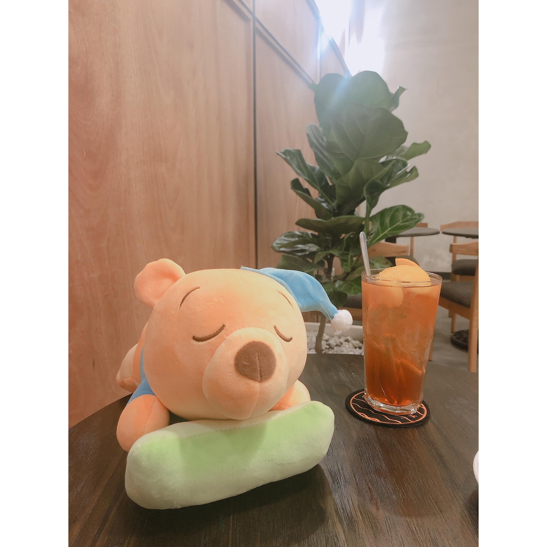 Gấu bông vàng ngủ gật