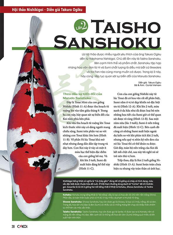 Cá Koi (Tập 4)