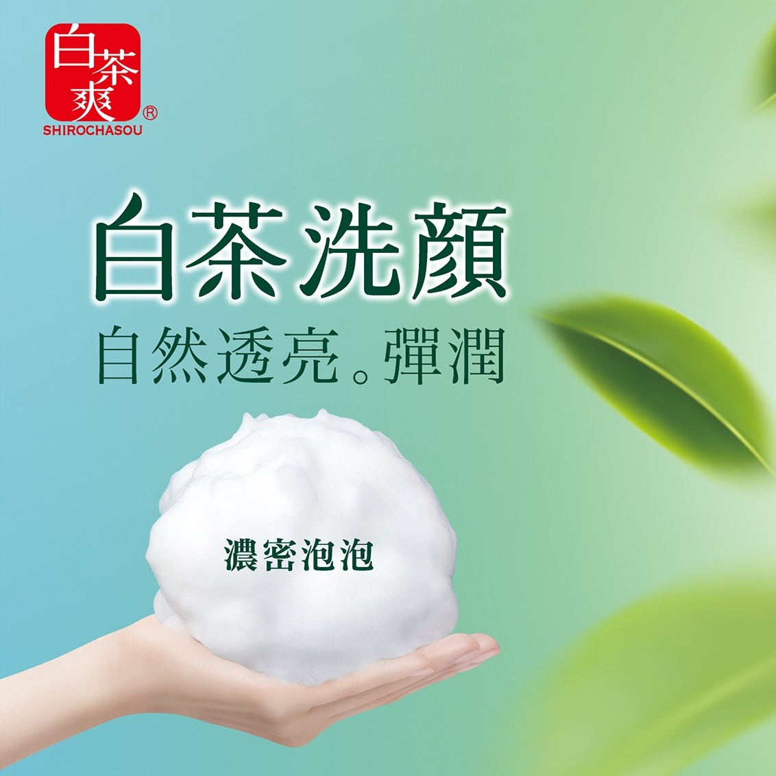 Sữa Rửa Mặt Trà Trắng Shirochasou White Tea Face Wash (120g)