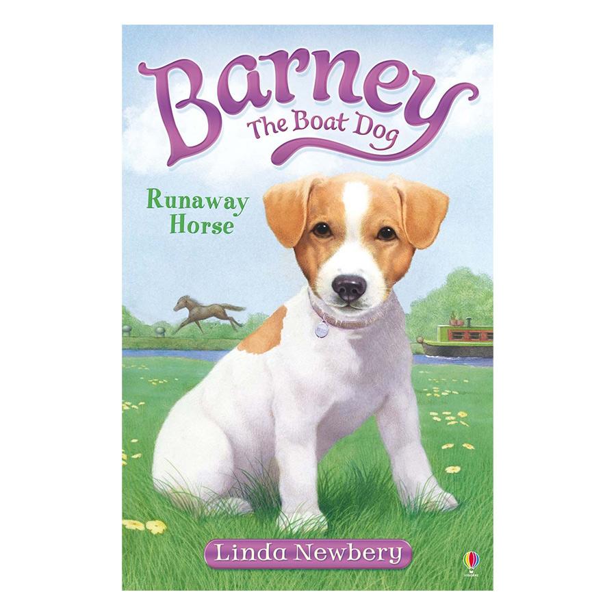 Usborne Young Fiction Barney the Boat Dog: Runaway Horse!