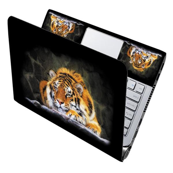 Mẫu Dán Decal Laptop Nghệ Thuật LTNT-359