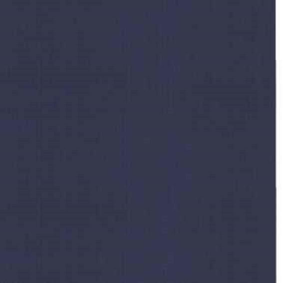 Ba lô phi hành gia trong suốt cho chó mèo - Màu xanh tím than