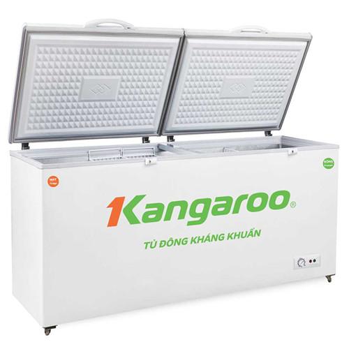 Tủ đông kháng khuẩn KG566C2 - Hàng chính hãng (Chỉ giao tại Hà Nội)