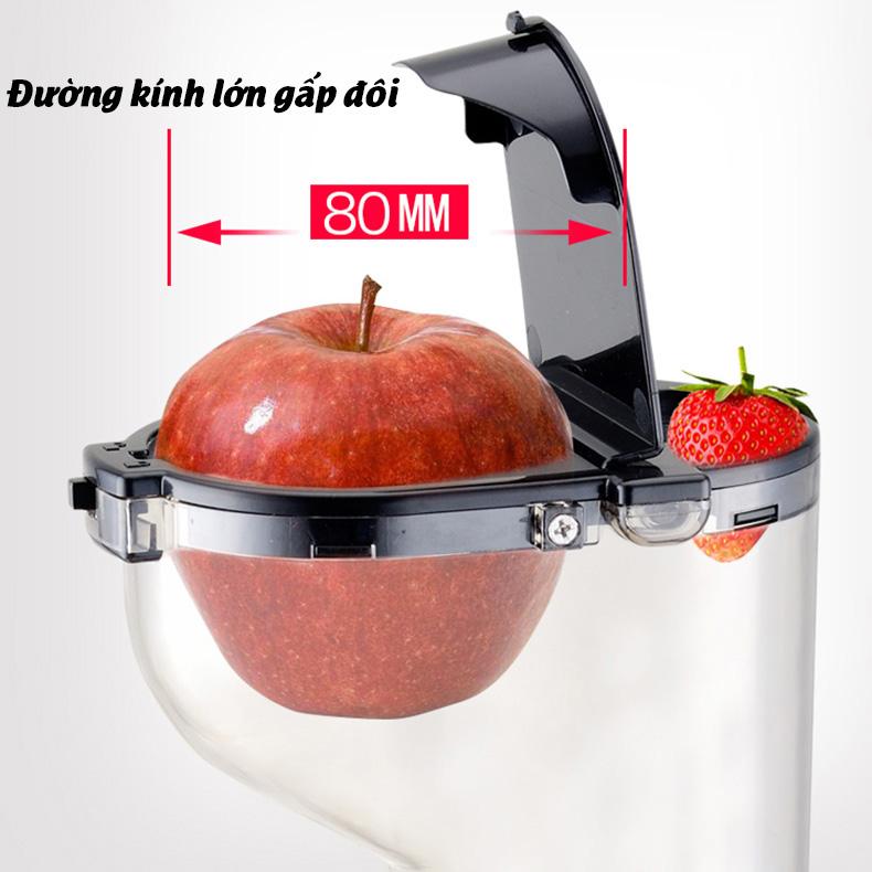 Máy ép chậm cỡ lớn RH-551 mẫu mới ép rau củ hoa quả cực nhiều nước ép nguyên quả kèm 10 móc dán chịu lực