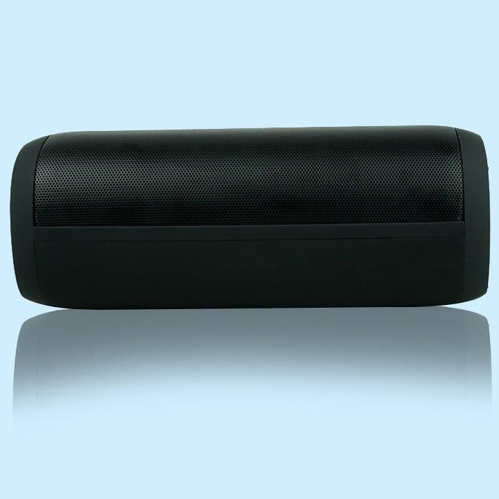 Loa bluetooth đẳng cấp âm thanh âm chuẩn bass  8810 PF173