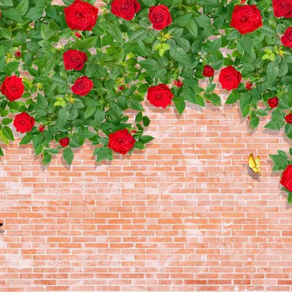 Tranh dán tường hoa 3D TH47