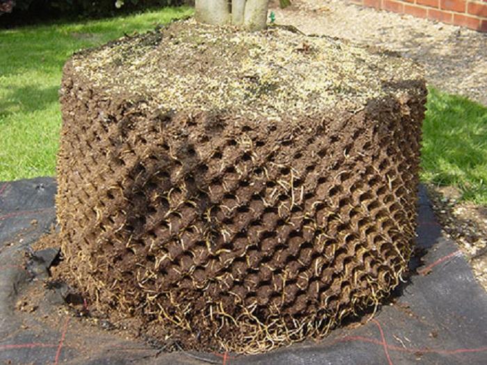 Bầu Ươm Thông Minh RoPot 70cm x 5m Ươm Dưỡng Vườn Cây Tiện Lợi