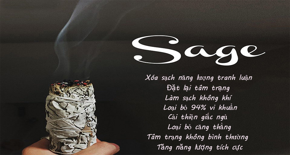 Sét 1 bó lá xô thơm trắng white sage hoa xanh 10cm và 1 thanh gỗ palo santo trắc xanh 5-6gr Combo06