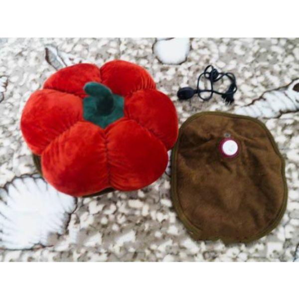 Túi Sưởi Ấm Lưng Họa Tiết Trái cây Đa Năng (1 Sản Phẩm)- Dùng Điện  - Màu Giao ngẫu nhiên - Mẫu TSC0230