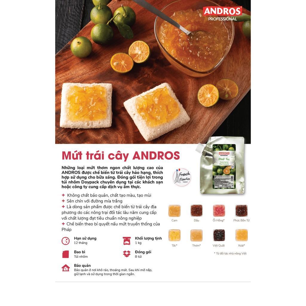 Mứt Việt Quất Thiên Nhiên Andros - Mứt trái cây - Túi 1kg