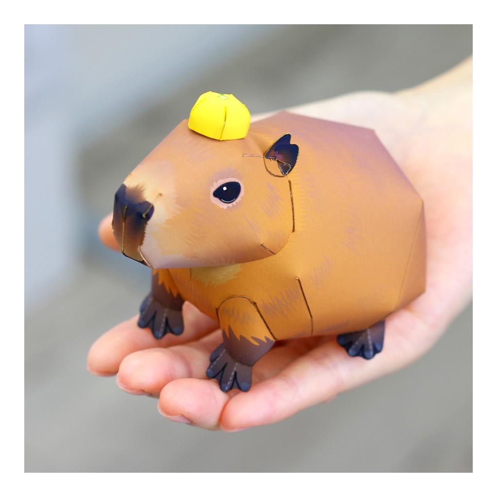 Mô hình giấy động vật Chuột lang nước