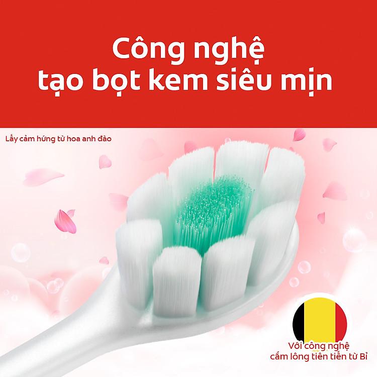 Bộ 4 bàn chải đánh răng Colgate Cushion Clean (Màu ngẫu nhiên)