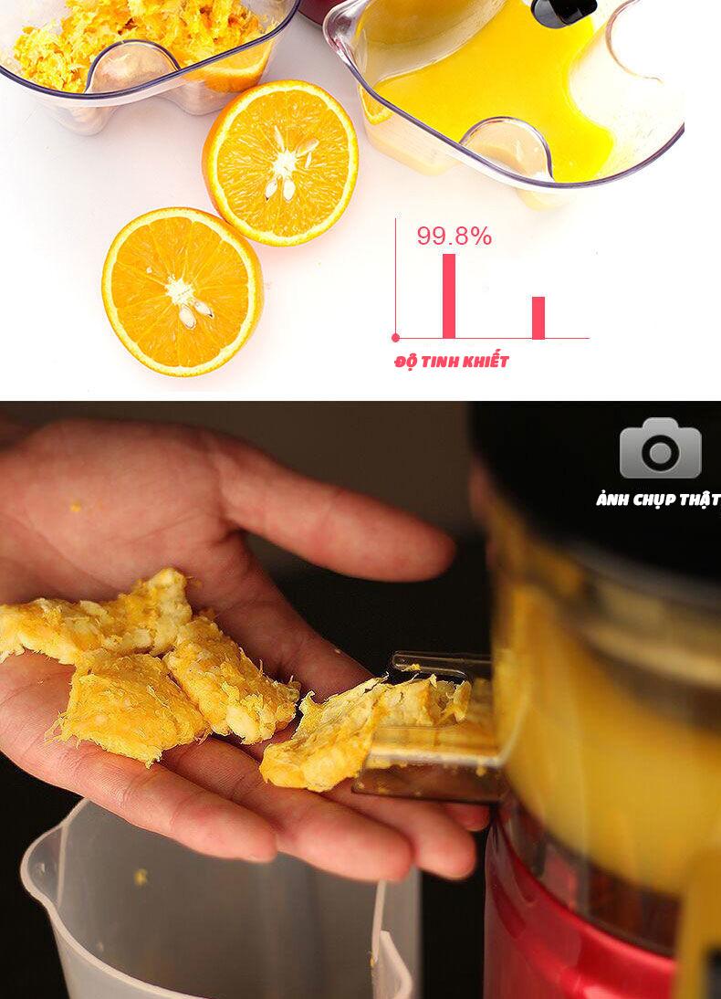 Máy ép chậm cỡ lớn RH-313 ép rau củ hoa quả 95% lượng nước giữ nguyên chất dinh dưỡng