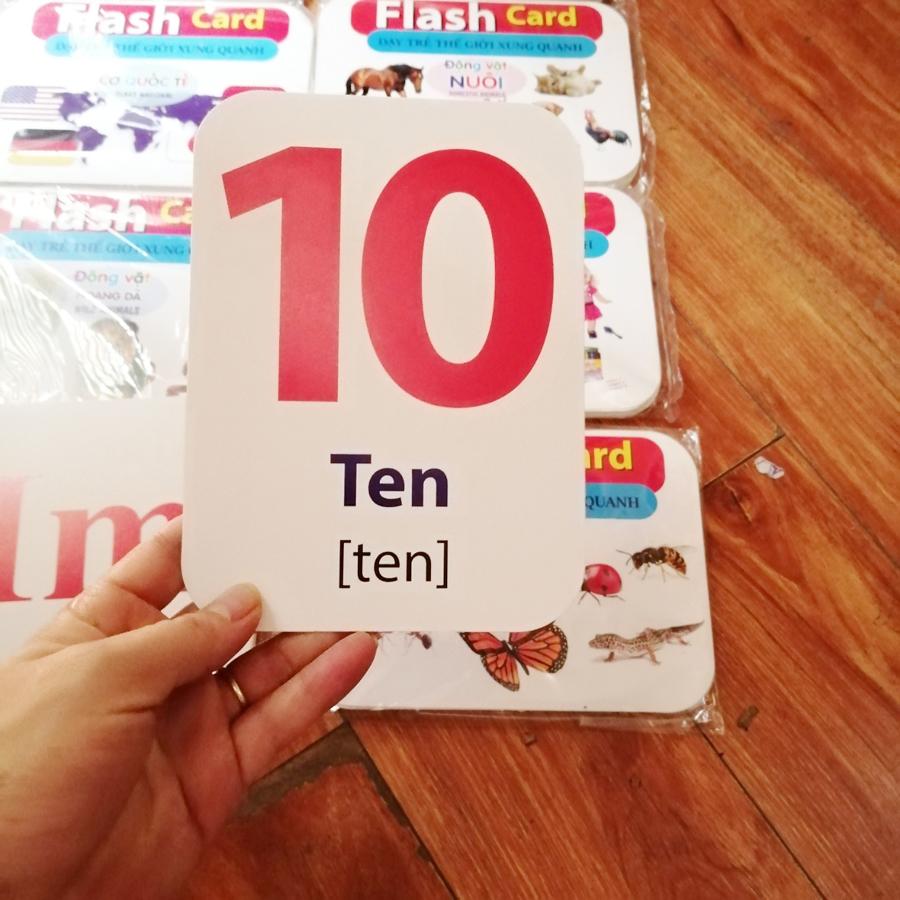 Bộ Thẻ Học Song Ngữ 14 Chủ Đề Cỡ Lớn - Dạy Trẻ Về Thế Giới Xung Quanh