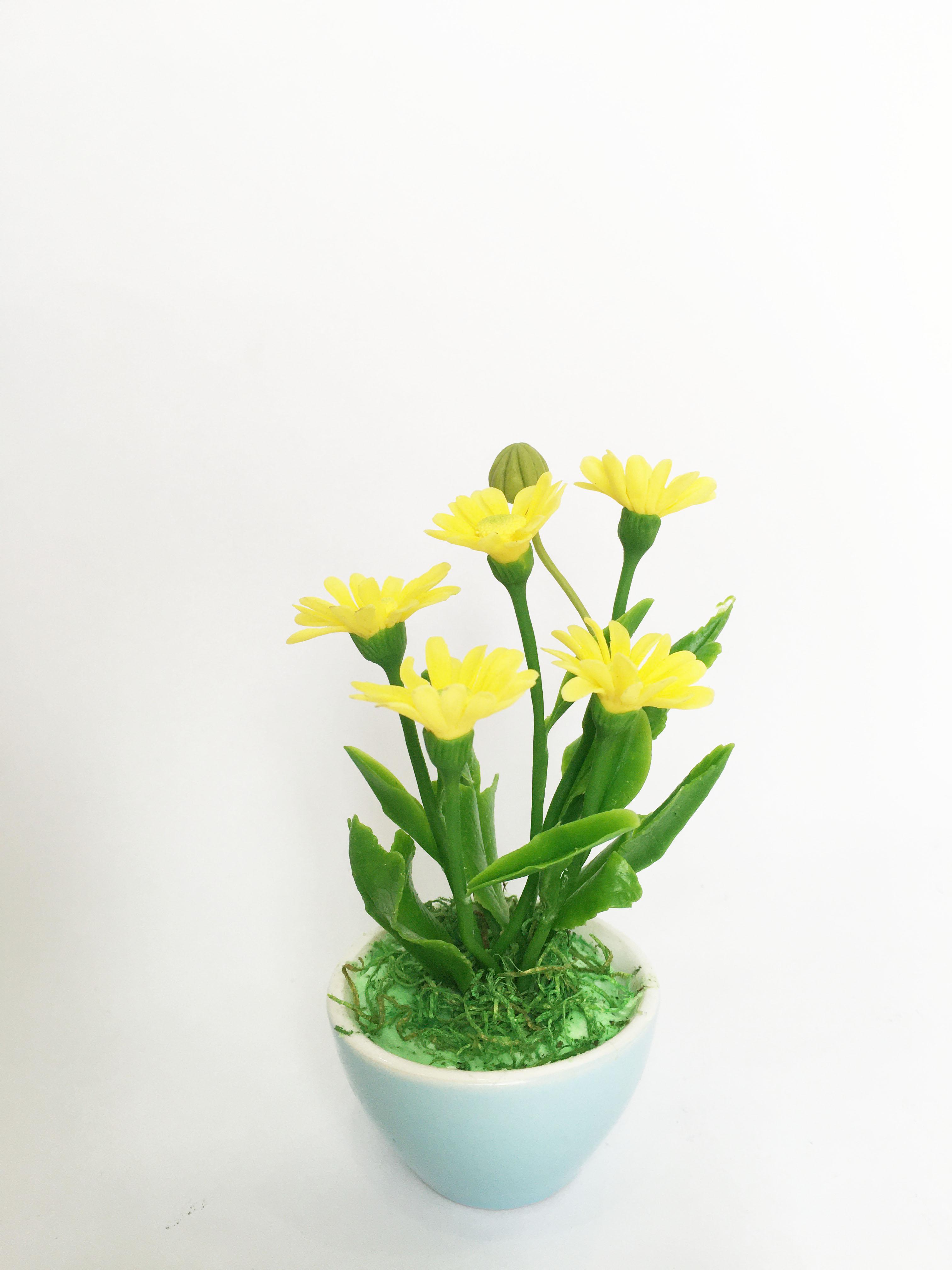 Chậu hoa đất sét mini- Bụi cúc họa mi trong cốc - Quà tặng trang trí handmade (12x8x8cm) (phát màu ngẫu nhiên)