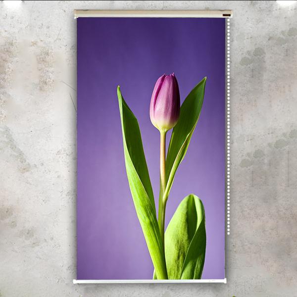 Rèm Cuốn In Tranh 1 Tấm Mẫu Mùa xuân 19