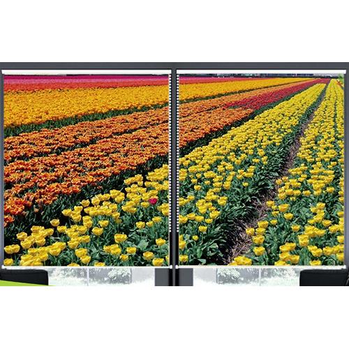 Rèm Cuốn In Tranh 2 Tấm Mẫu Hoa_TV Hoa 279