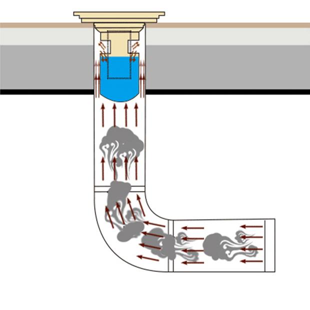 Phễu thoát sàn chống hôi và côn trùng đồng thau 12cm NX559